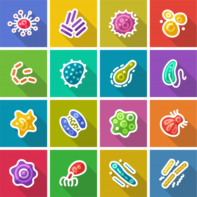 Colourful drawing of viruses and bacteria